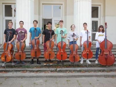 Orchester 2: Celli & Bass